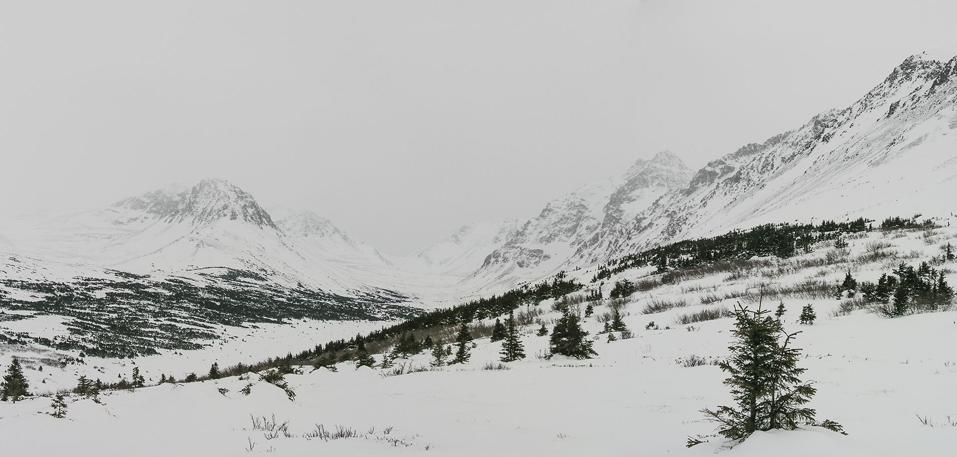 Flattop Montanha Anchorage, Alaska
